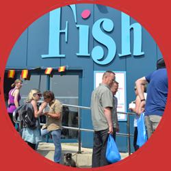 blogfish